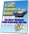 Thumbnail Use Traffic, Sign ups and Sales To Succeed Online
